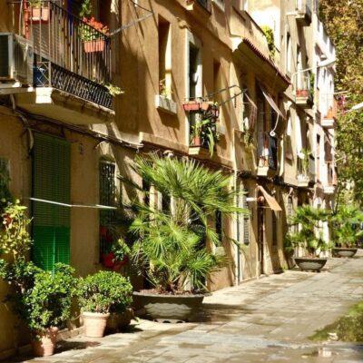 barcelona-street-summer