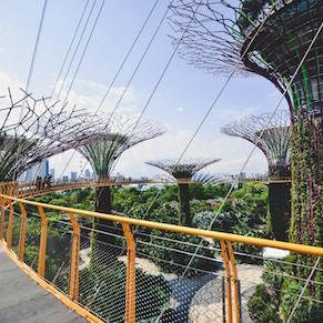 Singapore's Treasures