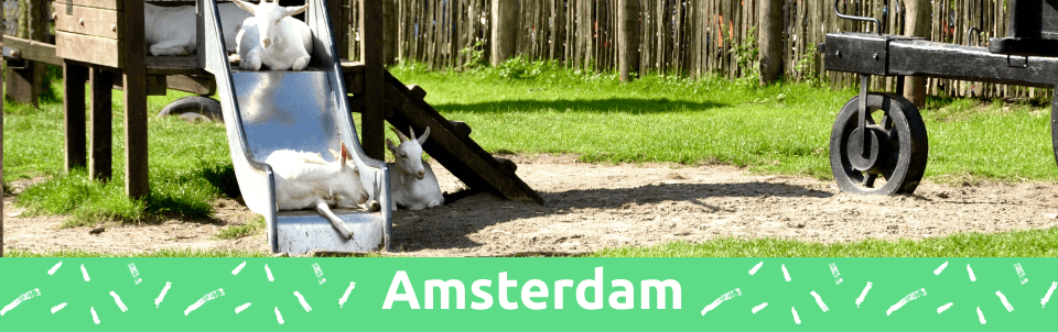 7 fun things to do with kids in Amsterdam